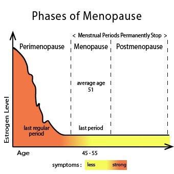 Faze menopauze - perimenopauza, menopauza, postmenopauza
