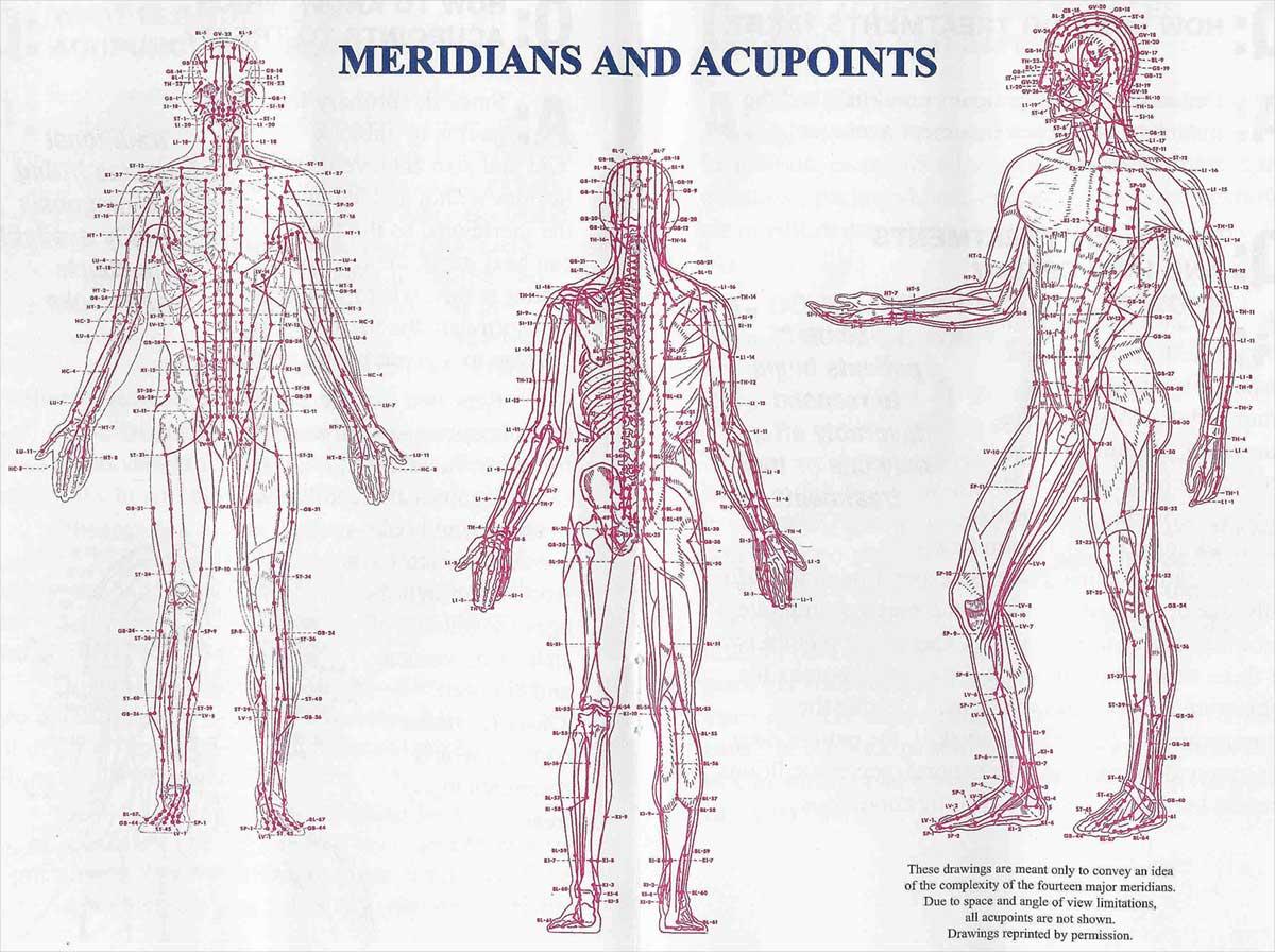 Meridijani i akupunkturne točke