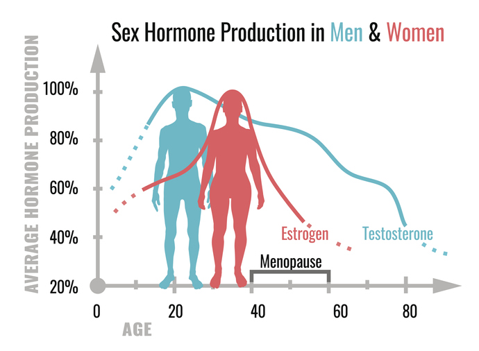 Estrogen i testosteron