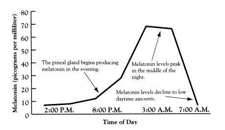 Vrijednost melatonina tijekom dana