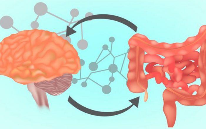 Stres i crijevnamikrobiota